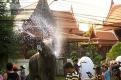 嬉戏地飞溅水乐趣和幸福在Songkran节日的大象 图库摄影