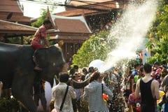 嬉戏地飞溅水乐趣和幸福在Songkran节日的大象 库存图片