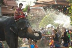 嬉戏地飞溅水乐趣和幸福在Songkran节日的大象 库存照片