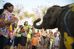 嬉戏地飞溅水乐趣和幸福在Songkran节日的大象 免版税图库摄影