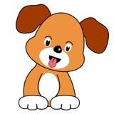 嬉戏的小狗 免版税库存图片