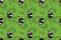 嬉戏的熊猫墙纸 库存照片