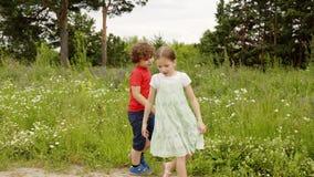 嬉戏的走在草草甸的男孩和女孩在暑假 快乐的获得兄弟和的姐妹在绿色草坪的乐趣 股票录像