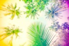 嬉皮rasta样式被弄脏的自然背景 免版税库存图片