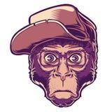 猴子例证 免版税库存照片