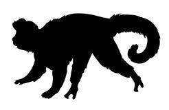 猴子剪影 皇族释放例证