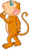 猴子动画片认为 免版税库存图片