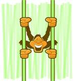 猴子垂悬的动画片 免版税库存图片