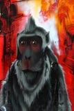 猴子墙壁街道画 免版税图库摄影