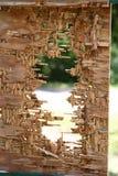 子弹撕开的木标志 免版税库存图片