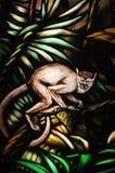 猴子彩色玻璃 免版税图库摄影