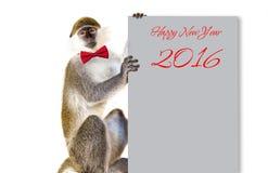 猴子标志2016年坐 免版税库存照片