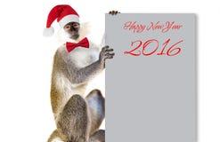 猴子标志2016年坐 库存照片
