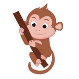 猴子的岁月 免版税图库摄影