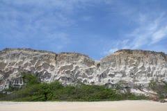 负子蟾的海滩沙丘 库存照片