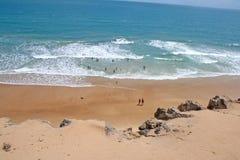 负子蟾的海滩 免版税库存图片