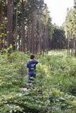 子项在森林里 图库摄影