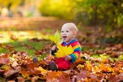 子项在秋天公园 与秋叶的孩子 库存照片