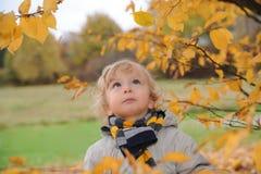 子项在秋季公园 库存图片