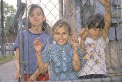子项在洛杉矶少数民族居住区 库存图片