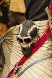 猴子头骨装饰 库存图片