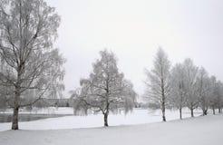 孑然冬天 免版税图库摄影