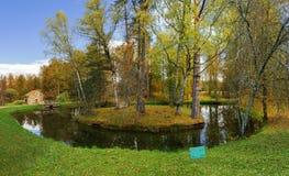 孑然海岛在公园博物馆庄园Mikhailovskoe的池塘 免版税库存照片