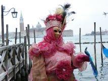 孔雀、面具和威尼斯 库存照片