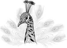 孔雀作为标志的鸟头吉祥人或象征设计的 库存图片