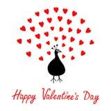 孔雀开放红色心脏集合尾巴 动物园动物汇集 异乎寻常的热带鸟 逗人喜爱的漫画人物 日愉快的华伦泰 Greeti 免版税库存照片