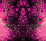 孔雀羽毛和花的惊人的装饰品 免版税库存图片