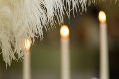 孔雀羽毛和蜡烛 库存图片