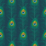 孔雀羽毛无缝的模式 库存例证