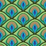 孔雀羽毛无缝的纹理  库存图片