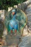 孔雀, SWAYAMBHUNATH STUPA在加德满都,尼泊尔 库存图片