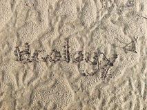 字体写了& x27; ecology& x27;在沙子 库存图片