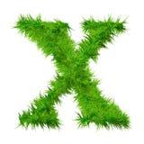 字体草高查出的解决方法 免版税库存照片