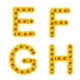 字母表向日葵 免版税库存图片