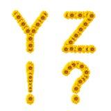 字母表向日葵 库存图片