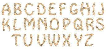 字母表壳 库存照片