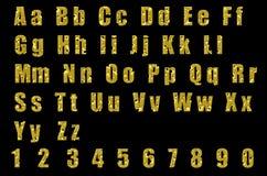 字母表干酪 库存图片