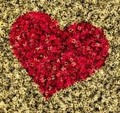 从字母表标志的心脏形状 免版税图库摄影