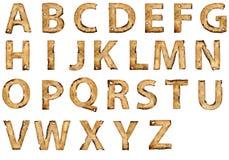 字母表烧了grunge纸张 免版税库存图片