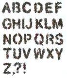 字母表绿茶 免版税库存照片