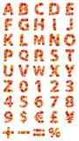 字母表美丽的花 免版税图库摄影