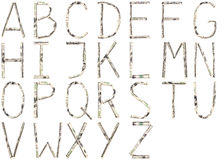 字母表美元 免版税图库摄影