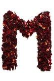 字母表英语冻结光照片使用的拍照技术是 在从木槿茶干花的M上写字在白色背景的 横幅的,广告信件 免版税库存照片