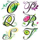 字母表设计要素s 图库摄影