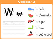 字母表追踪的活页练习题 库存照片