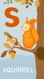 字母S,动物ABC 库存照片